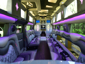Luxury Party Buses | Luxury Ride | NYC NJ
